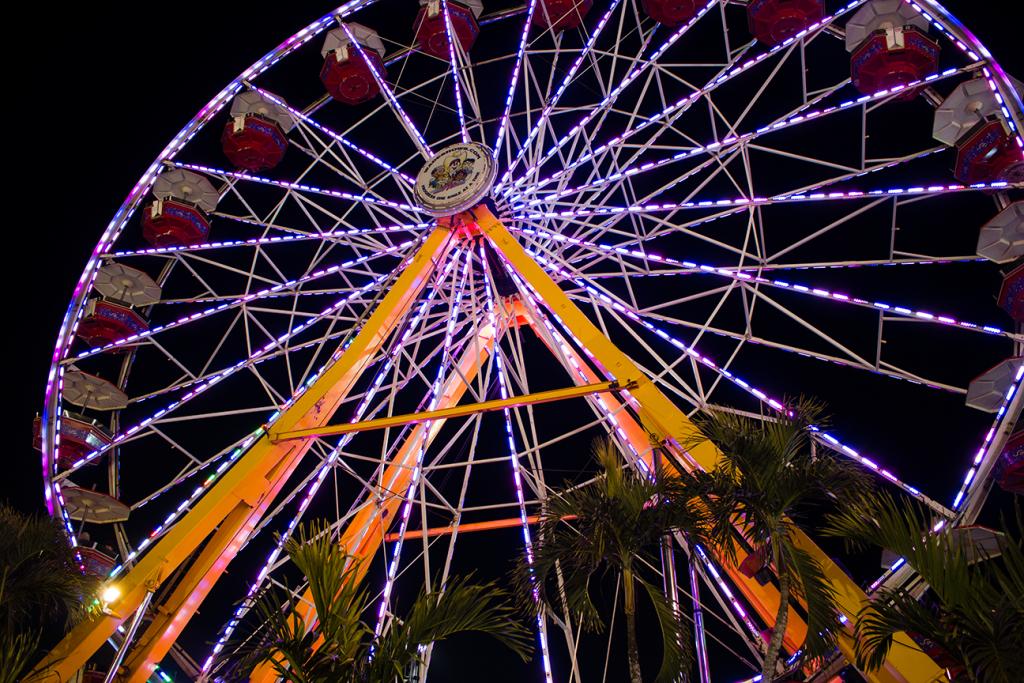 florida-state-fair-2015-ferris-wheel